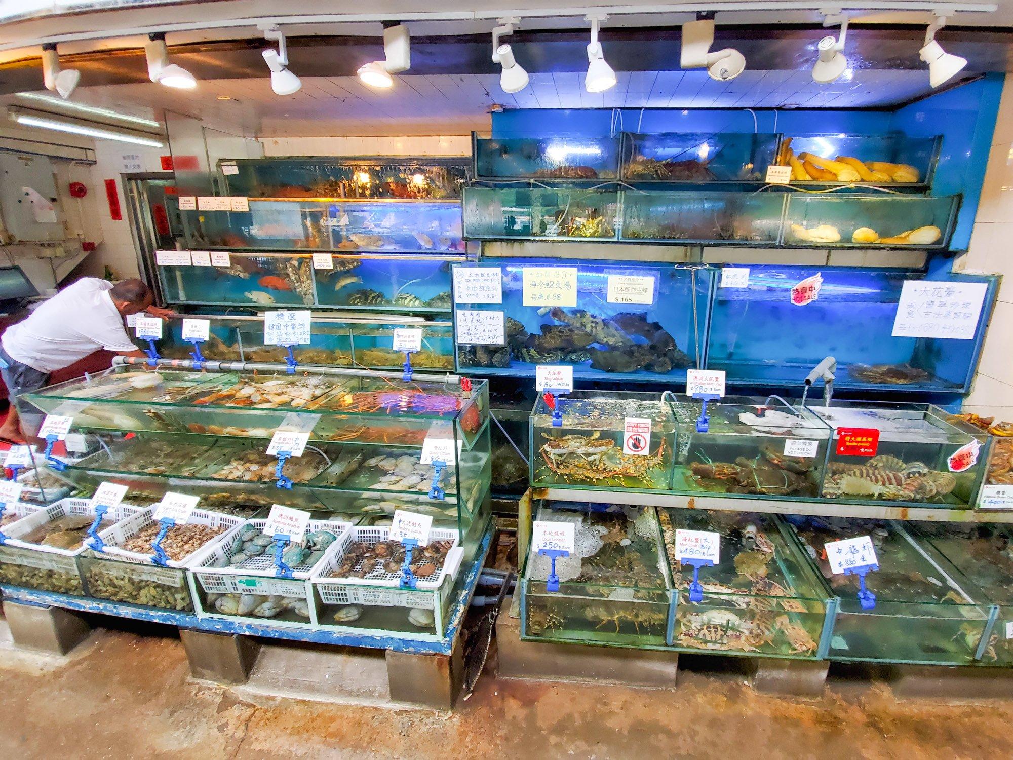 The huge selection of seafood at lamma island rainbow seafood restaurant!