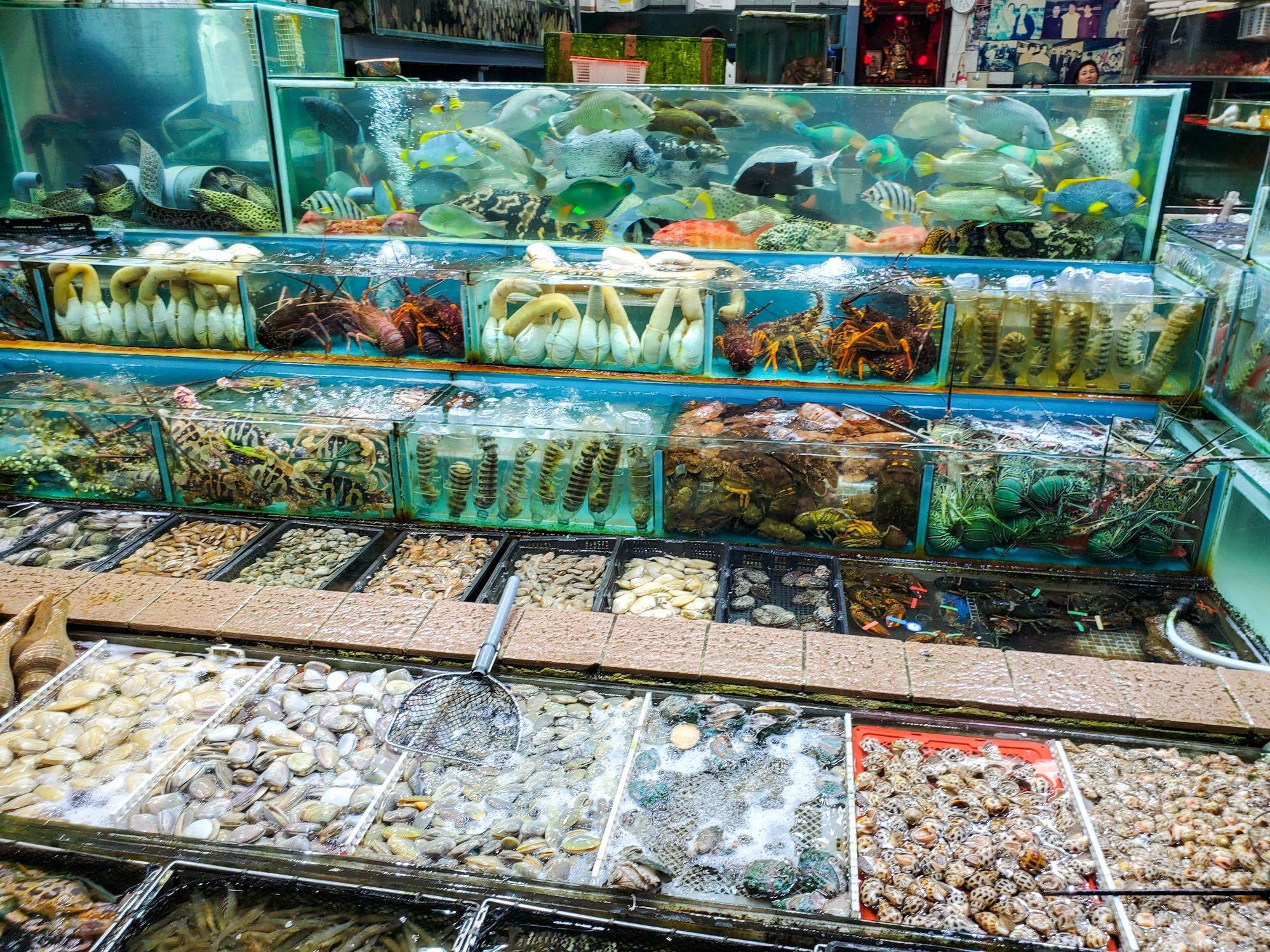 sai kung fishing village seafood restaurants in hong kong